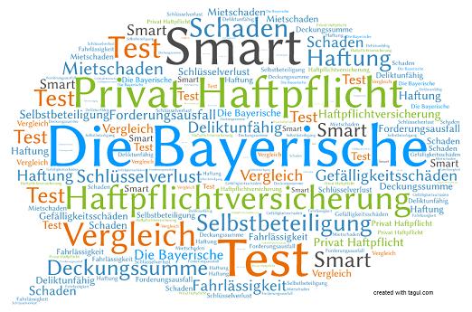 Test die Bayerische Haftpflichtversicherung Smart
